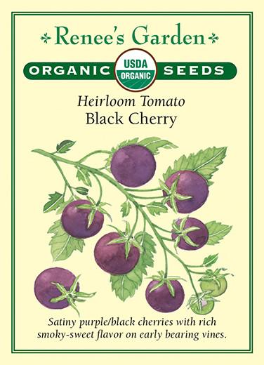 tomato-heirloom-black-cherry-tomatos-renees-garden