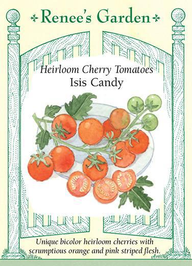 tomato-heirloom-cherry-tomatos-isis-candy-renees-garden