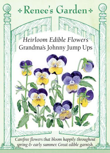viola-heirloom-edible-flowers-grandmas-johnny-jump-ups-renees-garden