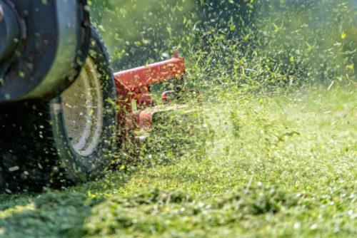 grass mower shutterstock_452822464