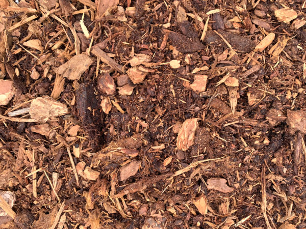 fir-mulch-premium-closeup