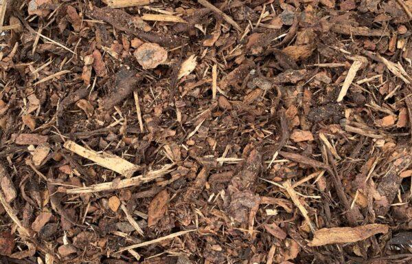 pine-mulch-closeup