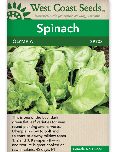 west-coast-seeds-spinach-olympia-f1