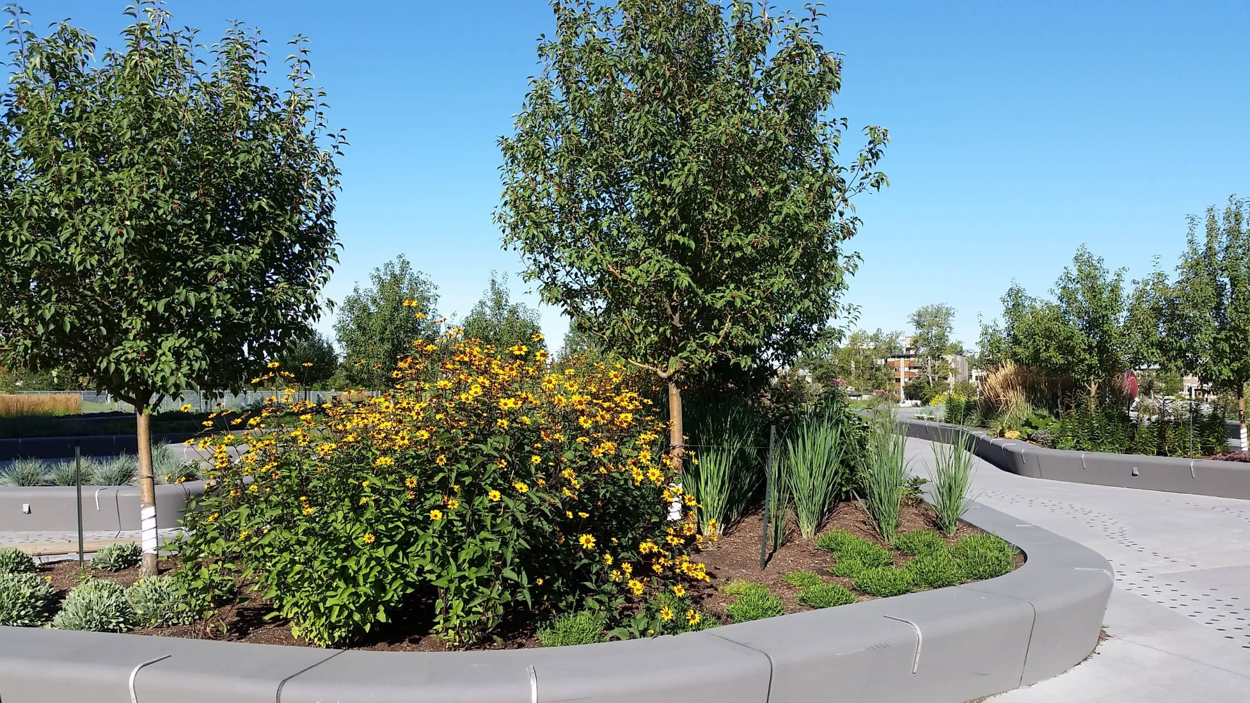 commercial-landscaping-calgary