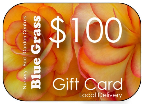 blue-grass-gift-card-100-delivery