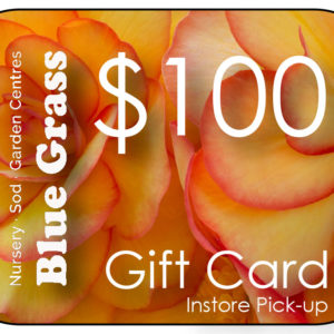 blue-grass-gift-card-100-instore