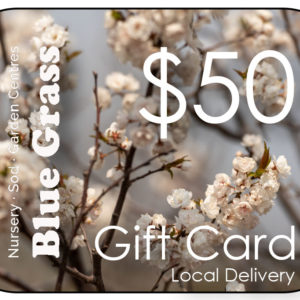 blue-grass-gift-card-50-delivery