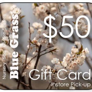 blue-grass-gift-card-50-instore