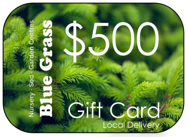 blue-grass-gift-card-500-delivery