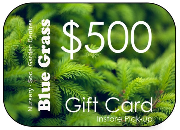 blue-grass-gift-card-500-instore