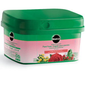 miracle-gro-water-soluble-rose-plant-food-0.5-kg