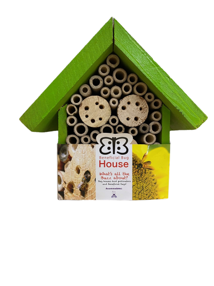 beneficial-bug-house-bees-wood