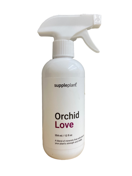 orchid-love-suppleplant