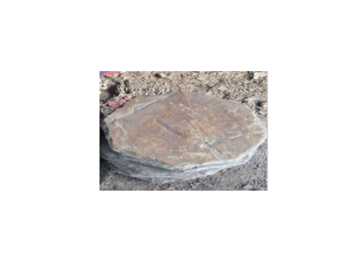 slate-natural-stepping-stone