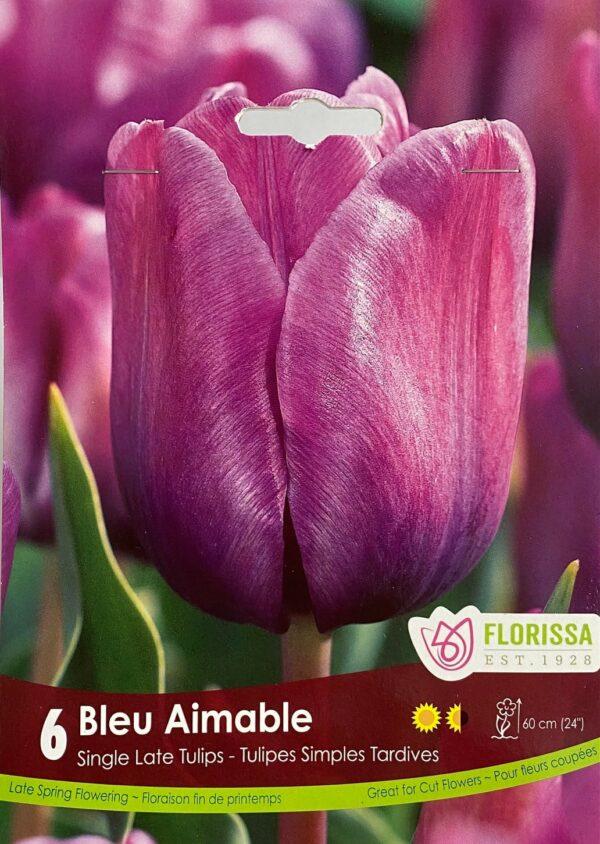 fall-bulbs-tulips-single-late-bleu-aimable